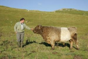 Malhamdale Belted Galloway, Neil Heseltine